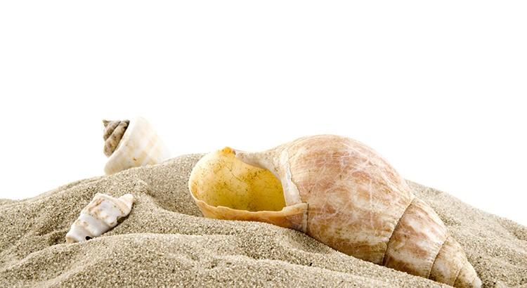 Lo que es del mar debe quedarse en el mar